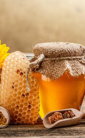 День пасечника (День пчеловода) — безупречный триумф пчеловодов равным образом хлебный спас меда получай Украине