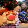 Tescoma. Рождественские конфеты для Кота Бекона:)