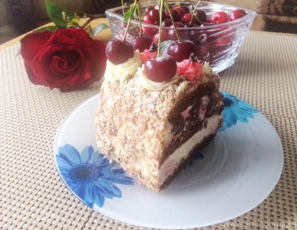 Сливочный шоколадно-вишневый торт (утилизация белков)