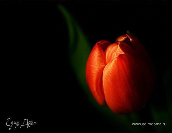 С 8 марта... праздником Весны!!!:)
