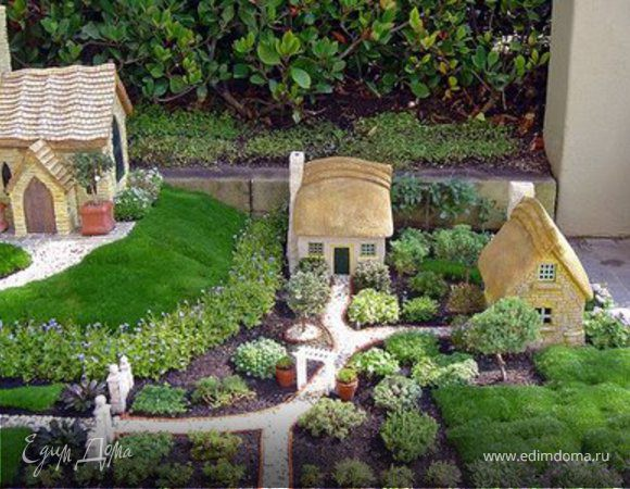 Мини-сад. Мечты и грезы