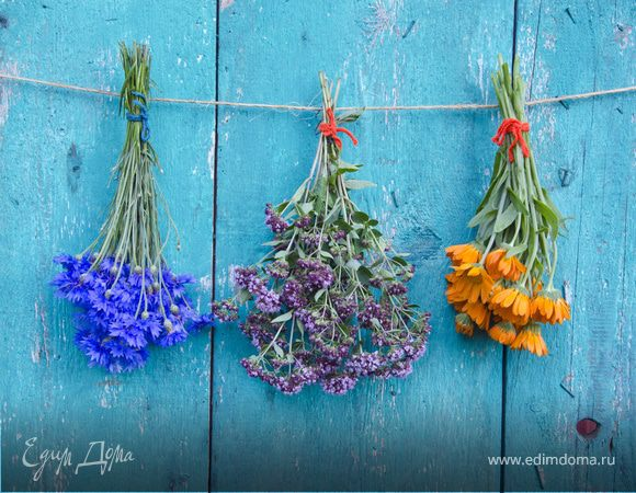 Кладовая здоровья и красоты: сушим летние заготовки