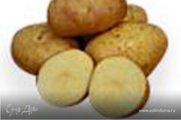 В керамический противень налить две СТЛ оливкового масла и положить цыплят. Картофель хорошо промыть от земли, разрезать пополам и положить в свободные места на противне. Добавить дольки белого лука и оставшийся чеснок. Овощи посыпать остатками специй с разделочной доски, можно немного подсолить и сбрызнуть оливковым маслом.