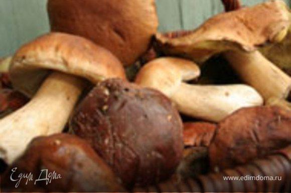 Нарезать кубиками сыр. Аккуратно помыть и очистить грибы. Белые грибы не любят воду,поэтому осушите их сразу бумажным полотенцем. Нарежьте грибы тонкими пластинами.