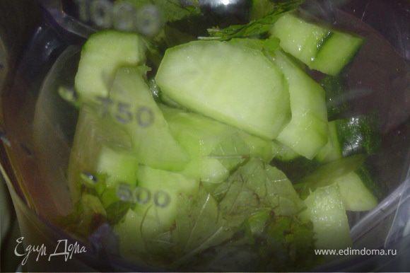 Нарезаем огурцы небольшими кусочками и измельчаем в блендере вместе с мятой.