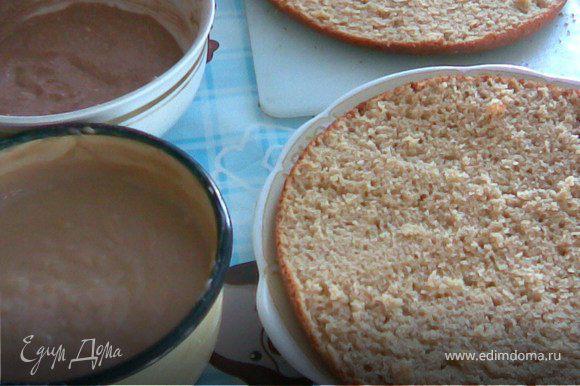 Второе тесто:яйца взбить с сахаром в пышную пену,добавить масло и хорошо перемешать,потом влить молоко.Муку просеять с разрыхлителем и добавить в массу.Тесто должно быть не очень густым(как бисквит)подмешать какао. Выпекаем корж и разрезаем его пополам.