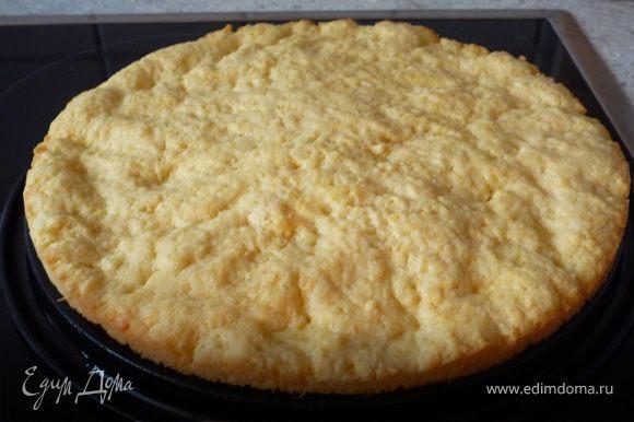 Дно разъемной формы смазать маслом и выложить туда песочное тесто (из холодильника). Запечь в духовке при той же температуре 15 минут. Достать и остудить.