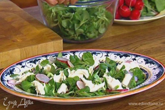 Салатный микс выложить на большое блюдо, а сверху — редиску и моцареллу. Листья мяты порвать руками и посыпать салат.