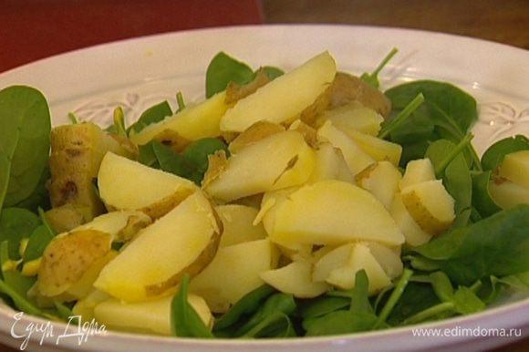 Шпинат выложить на большое блюдо, полить его майонезом, сверху разложить картофель и снова немного полить майонезом.