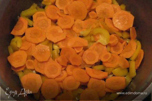 Добавить морковь, нарезанную тонкими кружочками. Немного посолить