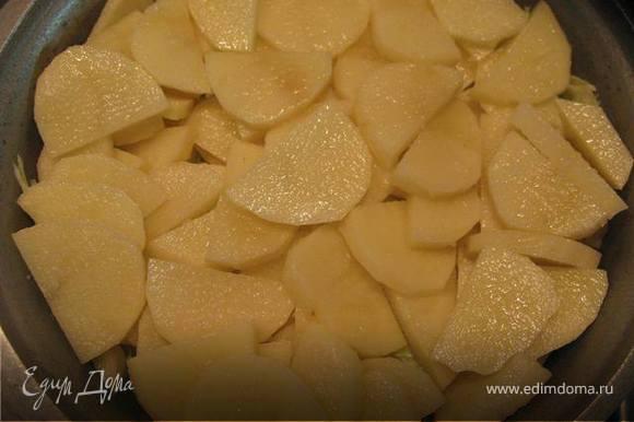 Картофель, нарезанный тонко полукругом, посолить.