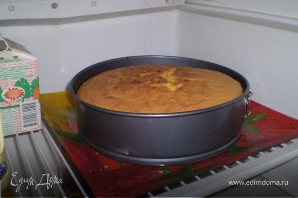 Готовый остывший бисквин разрежьте на 2 коржа (я это делала шелковой ниткой). Нижний корж положите на блюдо, установите кольцо от разъемной формы. Выложите начинку и накройте вторым коржом. Оставьте в холодильнике на 4-5 часов.