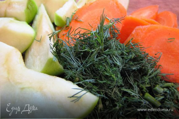 Яблоки нарезать дольками, морковь кружочками, укроп порубить,