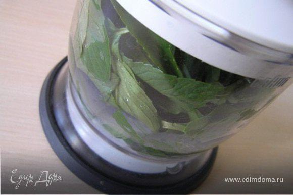 Оборвать листики мяты, мелко порубить или измельчить в блендере.