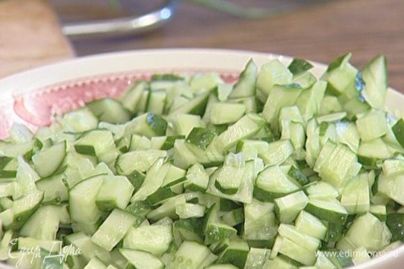 Огурцы, лук и свежий укроп мелко нарезать и добавить в холодник.