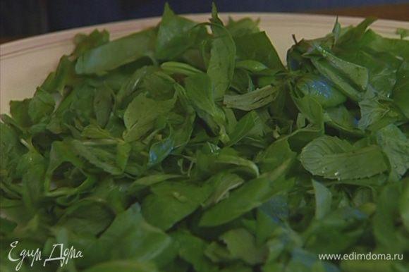 Соединить шпинат с листьями мяты.