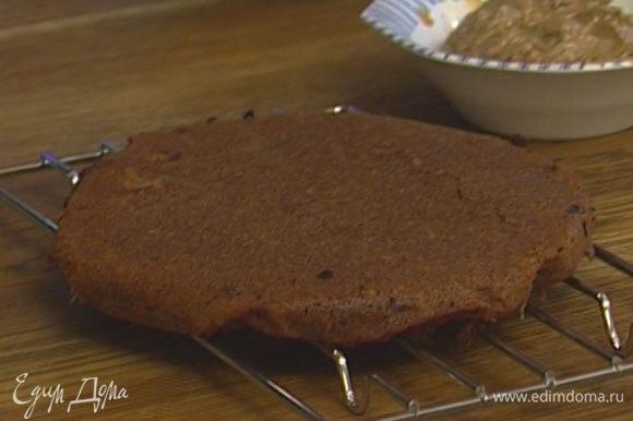 Выстелить две разъемные формы бумагой для выпечки, смазать бумагу оставшимся сливочным маслом. Распределить тесто по формам и выпекать в духовке до готовности 25–30 минут. Проткнуть спичкой, если сухая — корж готов.