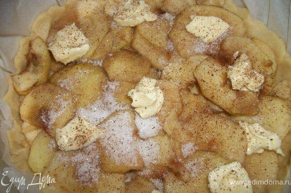 Яблоки выложить по кругу так, чтобы они немножко заходили друг на друга и закрыли весь корж.Посыпать сверху сахаром, разложить кусочки масла(оставшееся), посыпать корицей.Украсить тестом.