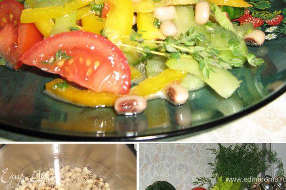 Получилось, что фасоль была замочена на 8 часов, поэтому варилась она всего 15 минут!!! Овощи я нарезала на достаточно крупные кусочки. Добавила отварную фасоль, рубленную зелень. Ингредиенты соуса я быстро смешала и заправила салат. Немного свежее молотого переца, и легкий ужин готов!!!