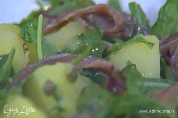 Перемешать руколу с картофелем, сверху разложить филе анчоусов.