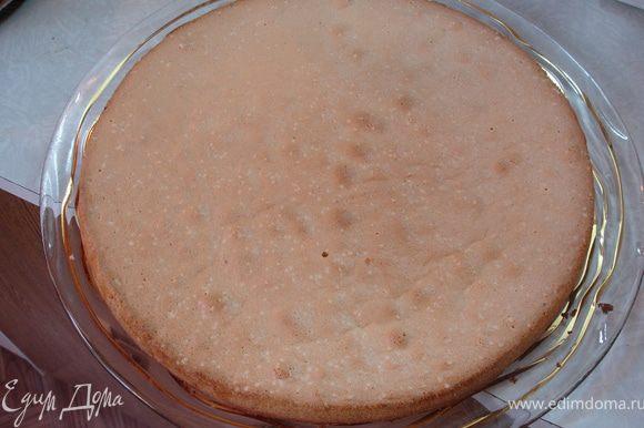 Выпечь одинарный бисквит: отделить белки от желтков (3 яйца). Взбить белки с небольшим количеством соли, постепенно добавляя 60 г сахара (1/3 стакана). Отдельно взбить 3 желтка с 60 г сахара (1/3 стакана), добавить ванильный сахар и 1,5 ст.л. горячей воды. Осторожно смешать белковую и желтковую смеси и так же осторожно добавить 100 г (1/2 стакан) муки и разрыхлитель. Выпекать бисквит примерно 25 минут при температуре 180 гр. После того, как корж остынет, уложить его на торт.