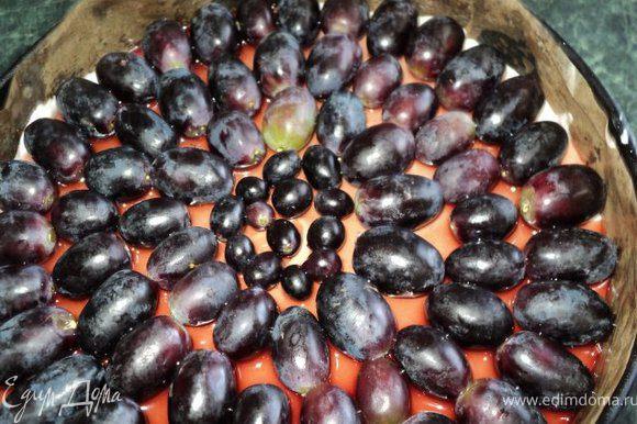 Для верхнего слоя: желатин залить половиной виноградного сока, дать разбухнуть, затем распустить на водяной бане. Вторую половину виноградного сока разогреть с сахаром до его растворения, добавить вино и распушенный желатин. Охладить до комнатной температуры. Виноград разобрать на ягодки. На торт выложить виноград и залить в два приема желе ( второй раз после того, как схватится первый слой). Поставить в холодильник застывать.