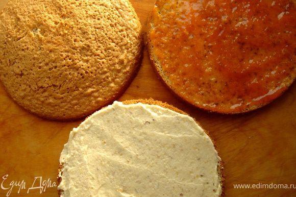 Разделить бисквит на три слоя.На нижний слой нанести масляный крем,на следующий-подогретый абрикосовый джем.Накрыть третьим слоем.Обмазать верх и бока торта масляным кремом.Украсить бока торта рубленными орехами,а верх-половинками грецкого ореха.Можно воспользоваться трафаретом и украсить торт какао.Готовый торт выдержать в холодильнике минимум 4 часа,а лучше ночь. Приятного чаепития!
