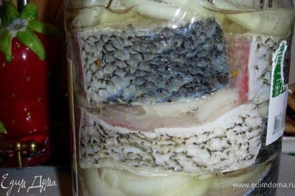 Складываем в 2-х литровую банку слоями: лук, рыба, лук, рыба...сверху лук и доливаем оставшееся масло. Ставим в холодильник на 2 дня. Затем наслаждаемся аппетитнейшей рыбкой!!