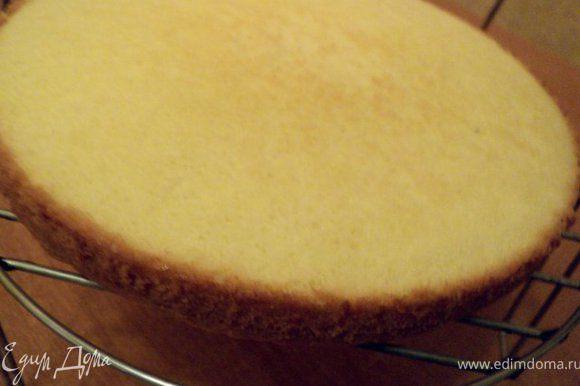 Дно разъемной формы застелить бумагой для выпечки, смазать маслом, вылить тесто. Выпекать при температуре 170 градусов 15-20мин. Готовый бисквит охладить, перевернув на решетку.