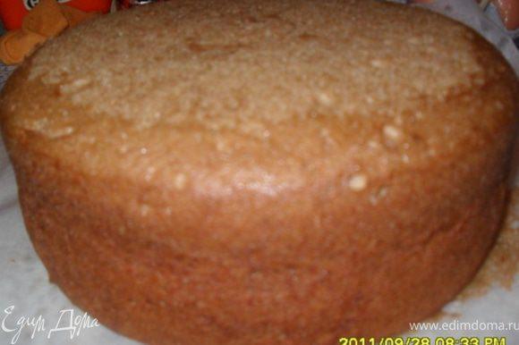 Медовый бисквит: Залить кофе кипятком. Охладить. Отделить белки от желтков. Взбить белки до образования устойчивой пены, постепенно добавить к ним половину количества сахара. Отдельно взбить желтки, остальной сахар, кофе, мед, растительное масло, пряности. Постепенно добавить просеянную муку с содой. Осторожно ввести взбитые белки и перемешать. Выложить смесь в форму и выпекать в предварительно разогретой до 180 градусов духовке примерно 40 минут.