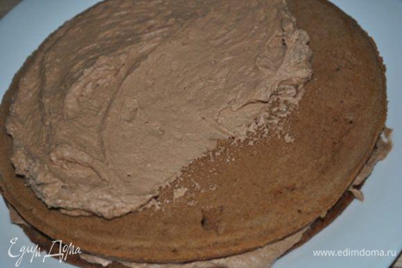 Остывшие коржи перемазать готовым кремом. По желанию коржи можно предварительно пропитать сиропом.