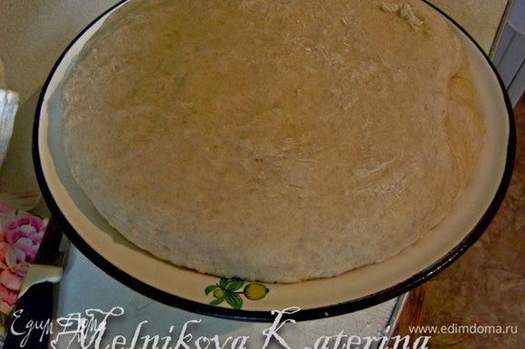 Положить тесто в тару, смазанную оливковым маслом, накрыть салфеткой и поставить в теплое и укромное место для подъема.