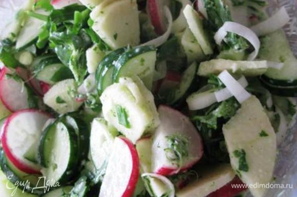 Редис и огурец нарезаем тонкими кружочками или полукружочками. Яблоко чистим, режем на 4-6 частей, удаляем семена, нарезаем тонкими ломтиками, взбрызгиваем лимонным соком. Руколу (или др. салат) вымыть, обсушить, разобрать на веточки. Все смешать с заправкой. Заправка - йогурт, зубчик чеснока, укроп и соль соединить в блендере. Приятного аппетита!