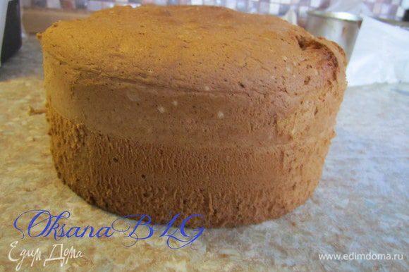 Приготовить бисквит в форме 18 см по рецепту http://www.edimdoma.ru/retsepty/20733-biskvit. Бисквит охладить разрезать на тонкие коржи 4-5 штук.