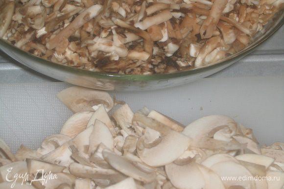 Мелкие грибы нарезать тонкими ломтиками, крупные грибы натереть на крупной терке и добавить их к луку. Тушить под крышкой 20 минут