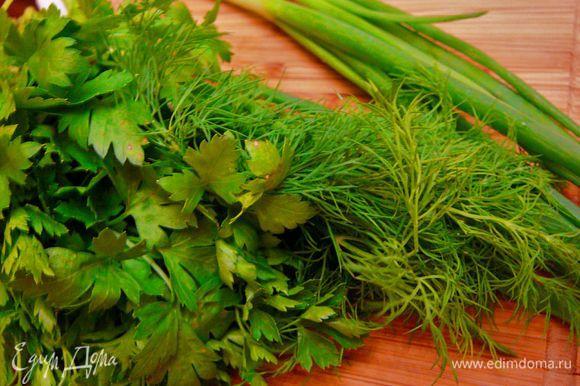 Зелень петрушки,укропа и перья лука мелко порезать.