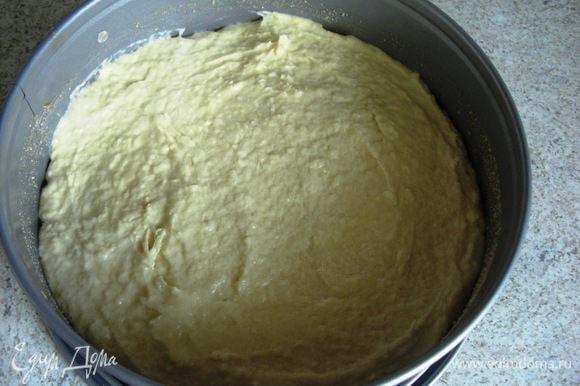 Ложкой тесто выложить в форму и разровнять.
