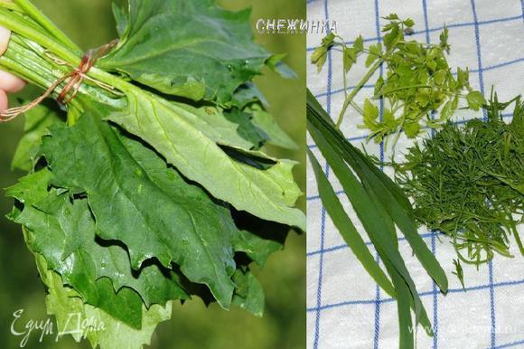 Подготовим шпинат (зелень). Из такого количество шпината и зелени я готовила по 2 порции. Зелень промыть, обсушить на полотенце. Шпинат у меня со своего огорода, поэтому я его также промыла, затем связала обычной ниткой в пучок.