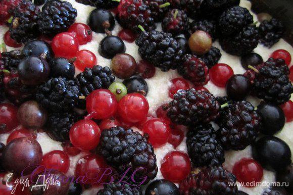 Один корж выложить в форму. Нанести 1/2 часть крема, ягоды. Накрыть коржом.