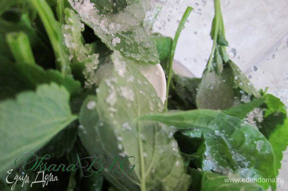 Мяту и шпинат вымыть, поместить в блендер добавить 1 ст.л. сахара и 1 ст. л. воды, взбить.