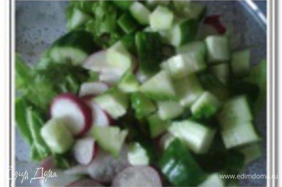 Огурцы, помидоры, яблоко порезать небольшими кубиками.