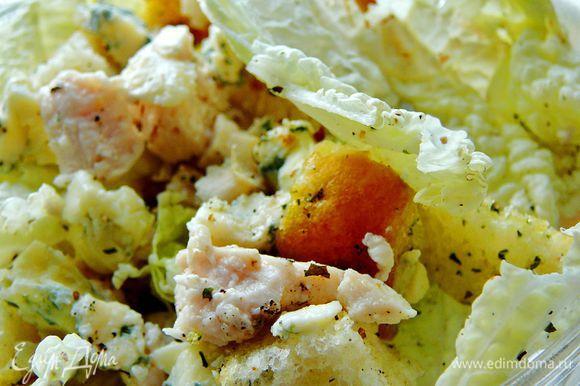 Листья пекинской капусты вымыть,порвать на куски,добавить нарезанное куриное филе,сыр поломать на мелкие кусочки и добавить сухари.Посолить,поперчить добавить сметану и подавать.