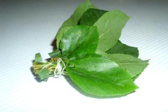 """Листики поместить в марлевый мешочек или сделать """"букетик"""", связав ниткой. Есть ещё один вариант использования вишневых листьев: сначала в течение 15 минут проварить их в небольшом количестве воды, а затем использовать полученный отвар для прготовления сиропа."""