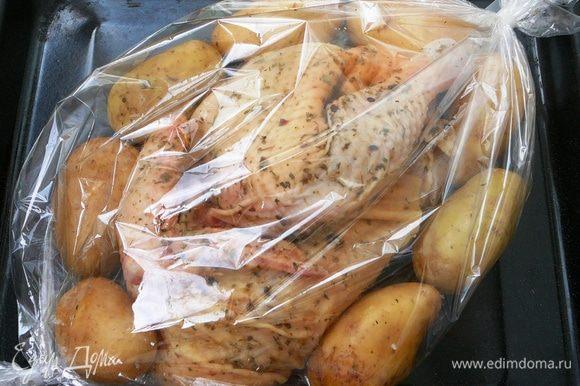 Цыпленка (я брала половину) натереть сухой аджикой и солью. Можно взять любые специи, которые вы любите. Оставить на ночь в холодильнике. Молодой картофель хорошо помыть, не чистить... Выложить в рукав для запекания цыпленка и картофель.