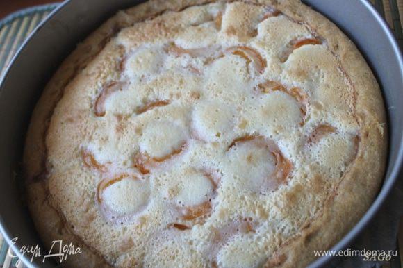 Выпекать при 180 гр. в предварительно прогретой духовке 50-60 мин. Вот такой должен получиться пирог. В процессе остывания он чуть-чуть осядет.