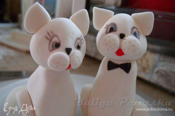6. Еще было пожелание, чтобы глаза у кота были зелеными (как у Жени, жениха) а глаза кошки - голубыми (соответственно как у Иришки, невесты)