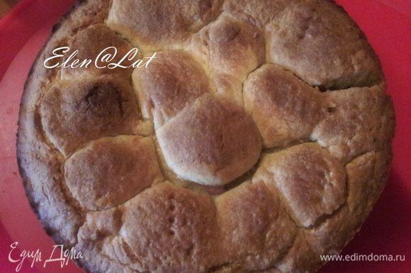 Пирог наколоть вилкой, смазать белком и выпекать 35-40 мин. при 180-200С