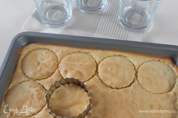 Из бисквитного коржа вырежьте выемками кружочки по диаметру ваших стаканов. Я не вынимала из противня и вырезала прямо там. Не бойтесь поцарапать противень формочками, бумага не позволит это сделать.