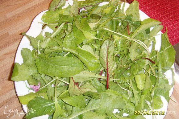 Картофель сварить в мундире, охладить, нарезать кружками, руколу вымыть, просушить, выложить на тарелку.