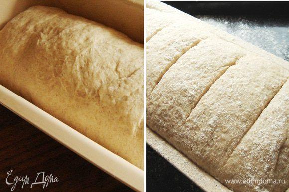 Хорошо подошедшее тесто выложить на рабочую поверхность (под липкое тесто подсыпать немного муки или сбрызнуть поверхность растительным маслом), размять его руками в прямоугольник, а затем свернуть в рулет. Переложить рулет в форму для хлеба (кексов) (у меня- 25х10-12х5см), присыпанную мукой,прикрыть плёнкой или полотенцем и опять убрать в тёплое место на 15-20 минут. Хлеб можно смазать молоком и присыпать мукой,при желании острым ножом сделать надрезы. Выпекать 7-10 минут при максимальной температуре,затем снизить температуру до 200*С и выпекать хлеб 20-25 минут. Если ваши формы меньше, то снизьте время выпечки до 5-7 и 20 минут соответственно. Готовый хлеб прикройте полотенцем и немного остудите, затем выньте из формы и опять заверните в полотенце. Вес готовой буханки-650-670 гр.хлеб остаётся свежим и мягким и на следующий день. Приятного аппетита!